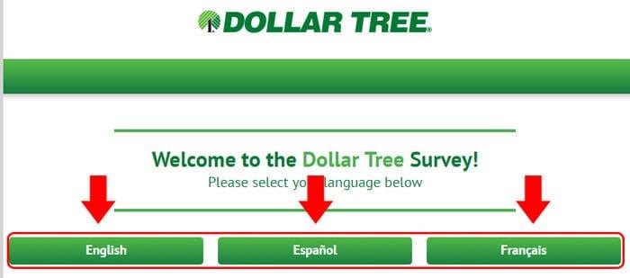 DollarTreeFeedback survey